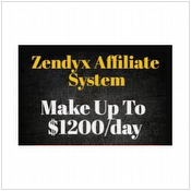 Make Up To $1,000 Per Day